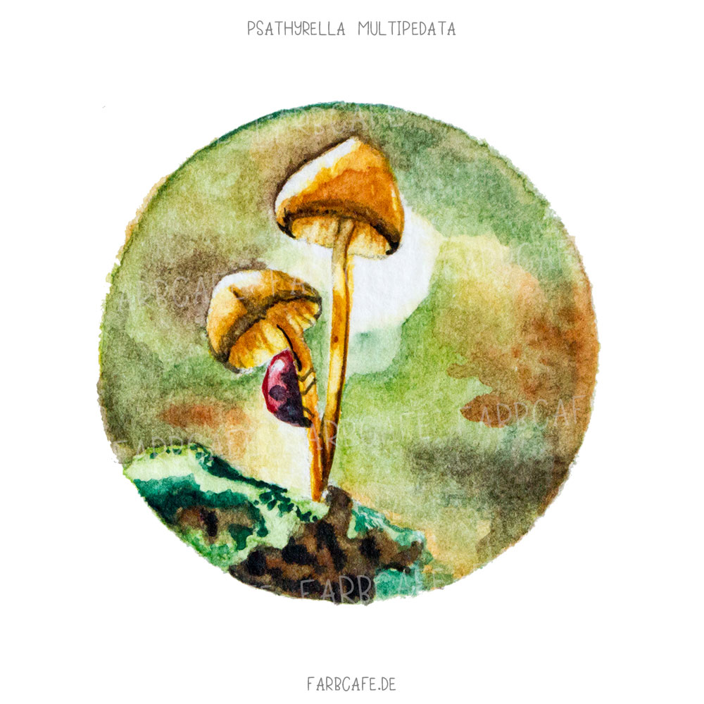 Pilz TinyArtworks Miniatur Aquarelle A6 Mini Poster Kunstdruck Printable